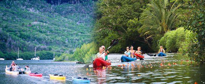 Outfitters Kauai - South Shore Sea Kayak Tour